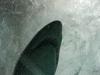pic_Aquarium011.jpg