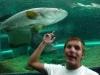 pic_Aquarium015.jpg